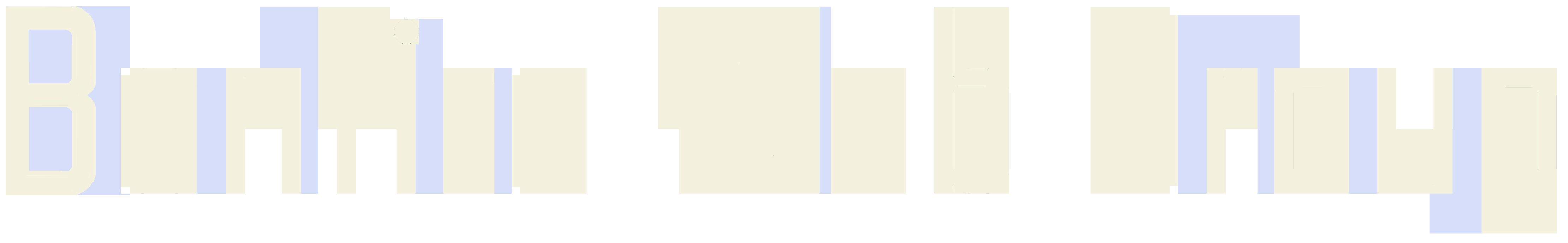 Bonfire Web Group